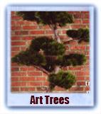 trees12